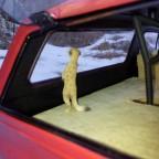 Was sieht das Erdmännchen im Schnee?